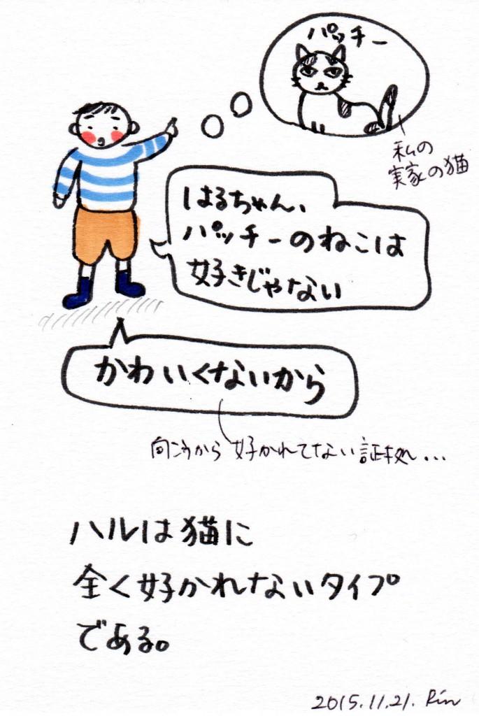 151121_neko 1