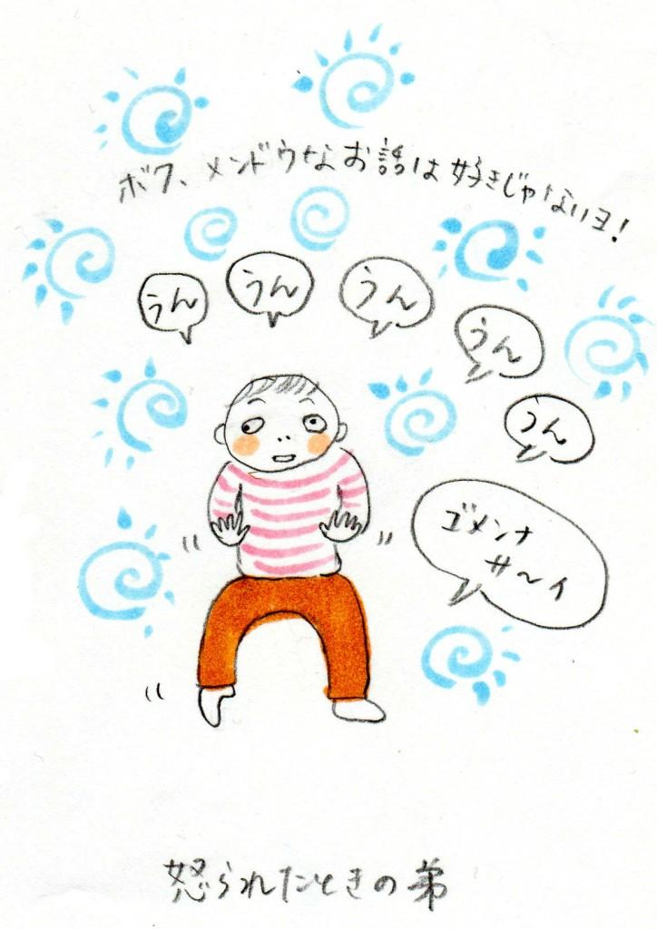 151231_okorareru 1