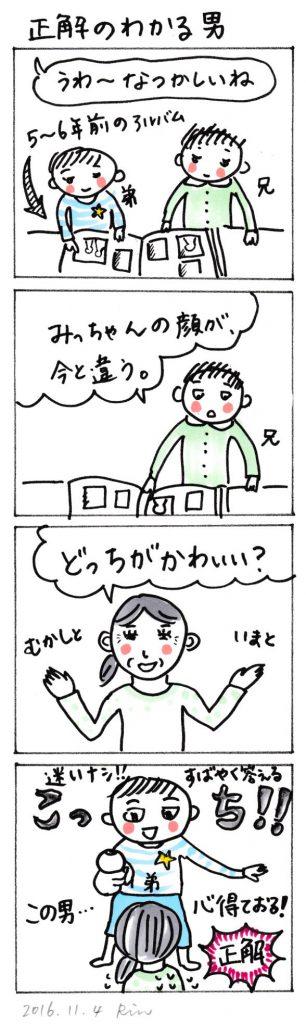 161104_seikai